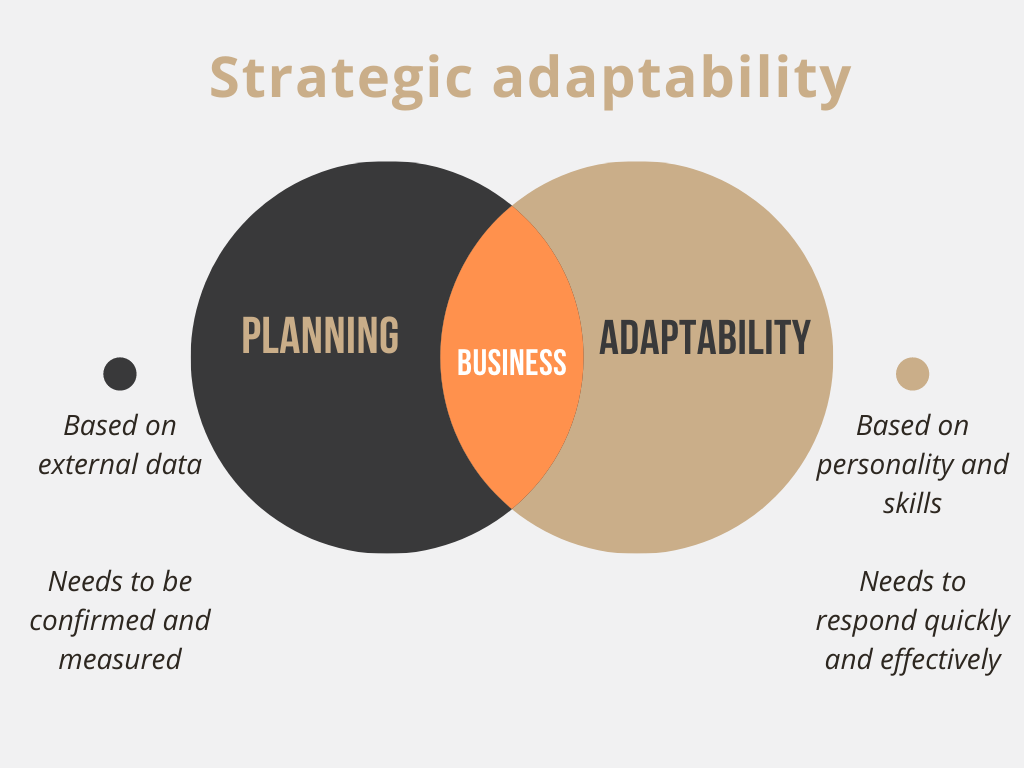 strategic adaptability